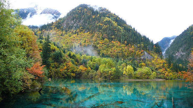 five flower lake Jiuzhaigou