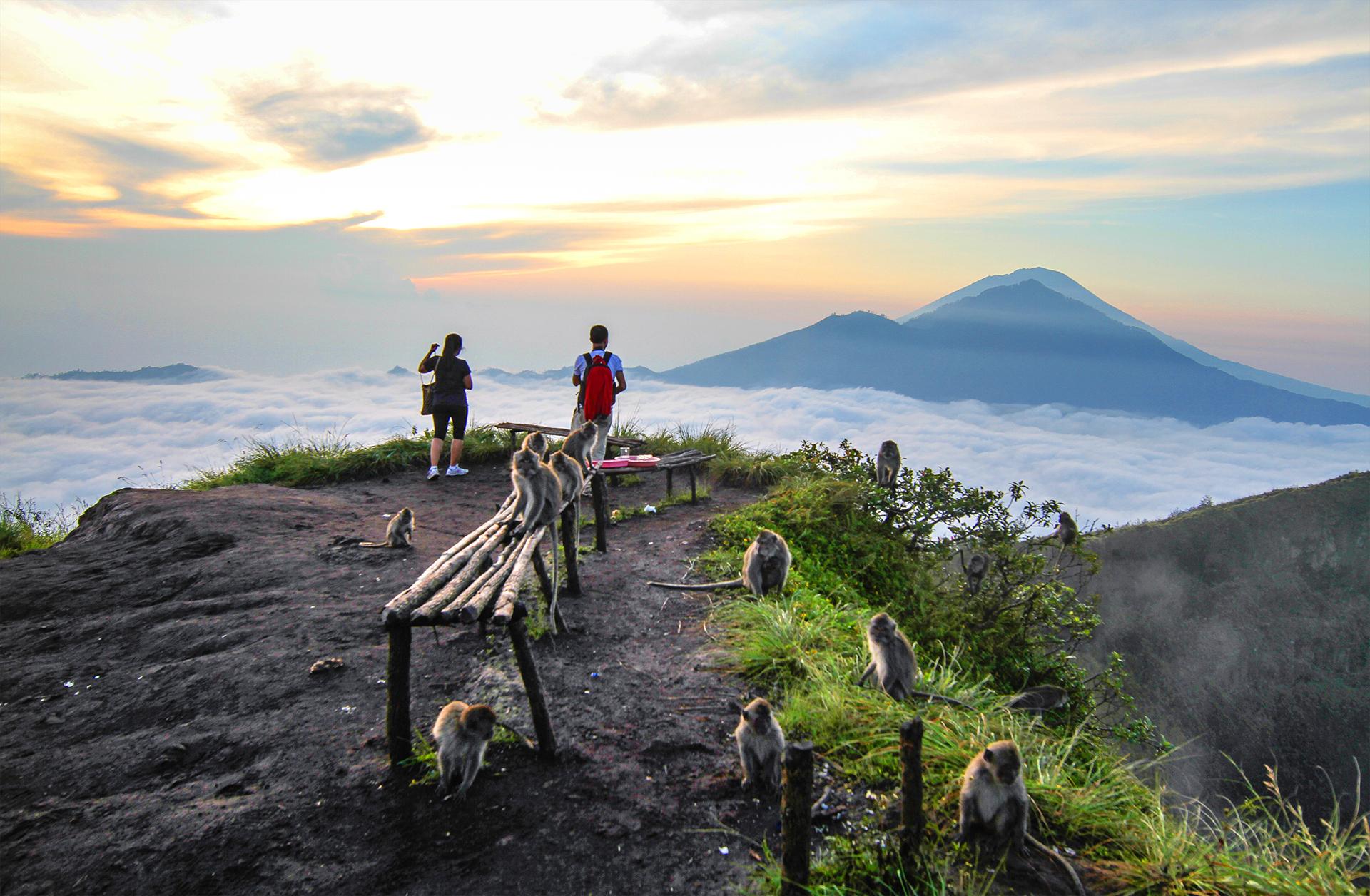 Bali explorer