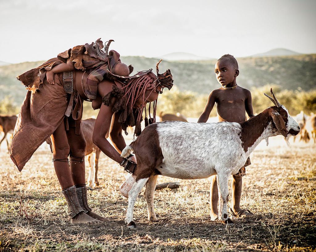 Himba stammen i Namibia