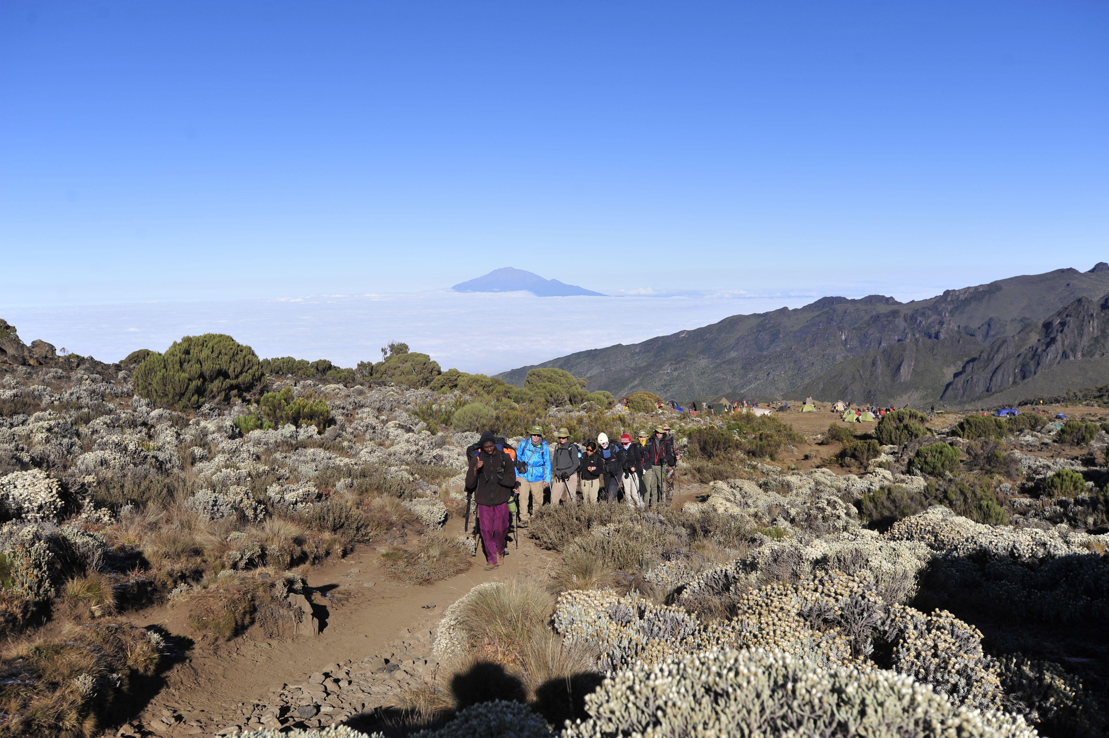 10 Dage – Kilimanjaro Bestigning ad Lemosho ruten