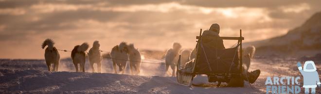 Rejser til Grønland