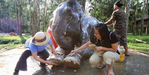 Elephant Hills i Khao Sok National Park