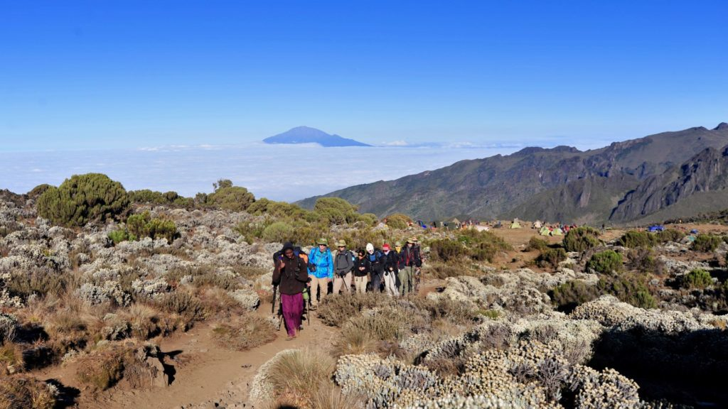 Kilimanjaro shira Machame